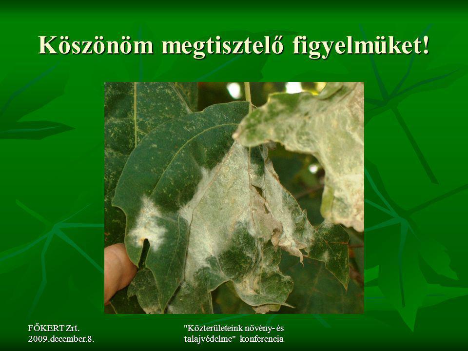 FŐKERT Zrt. 2009.december.8.
