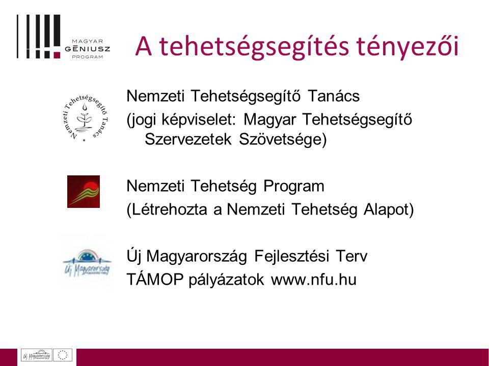 A tehetségsegítés tényezői Nemzeti Tehetségsegítő Tanács (jogi képviselet: Magyar Tehetségsegítő Szervezetek Szövetsége) Nemzeti Tehetség Program (Lét