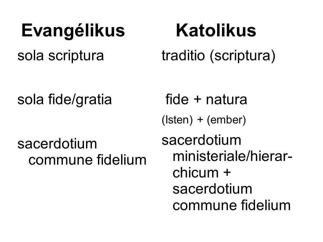 Evangélikus Katolikus sola scriptura sola fide/gratia sacerdotium commune fidelium traditio (scriptura) fide + natura (Isten) + (ember) sacerdotium ministeriale/hierar- chicum + sacerdotium commune fidelium