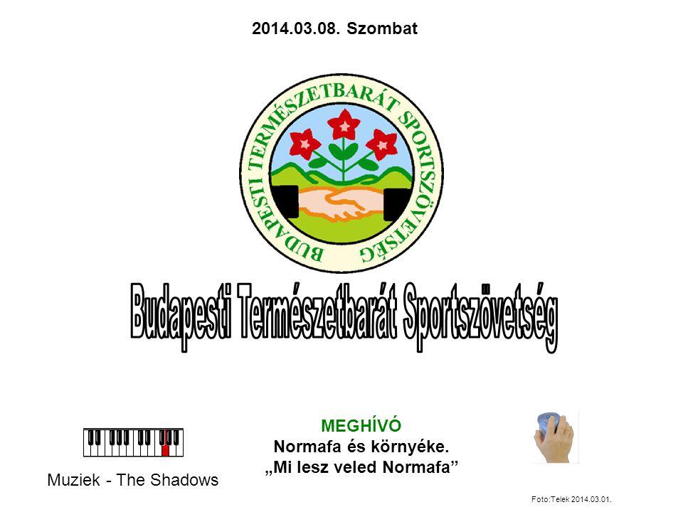 """Muziek - The Shadows MEGHÍVÓ Normafa és környéke.""""Mi lesz veled Normafa 2014.03.08."""
