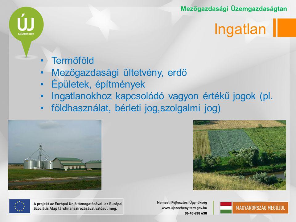 Ingatlan •Termőföld •Mezőgazdasági ültetvény, erdő •Épületek, építmények •Ingatlanokhoz kapcsolódó vagyon értékű jogok (pl.