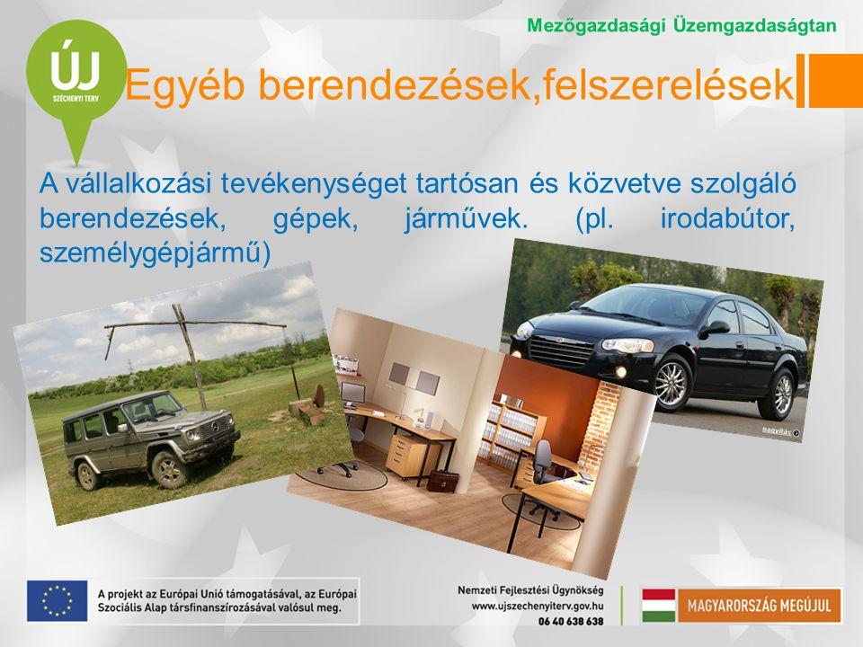 Egyéb berendezések,felszerelések A vállalkozási tevékenységet tartósan és közvetve szolgáló berendezések, gépek, járművek.