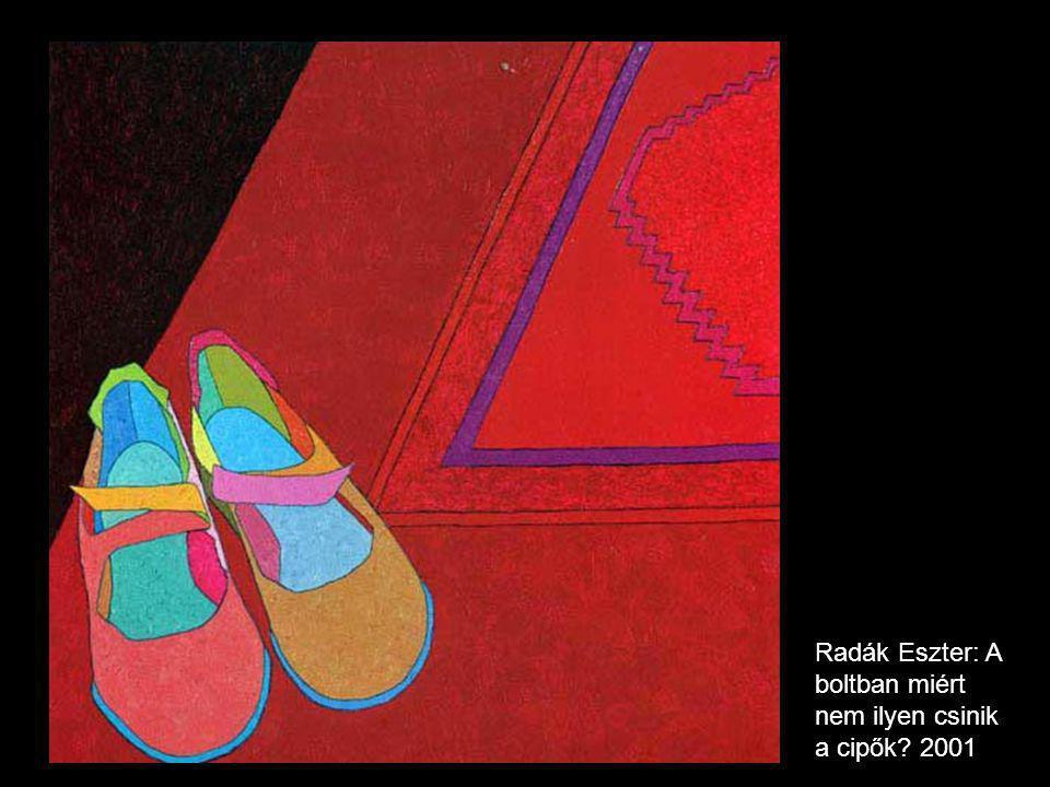 Radák Eszter: A boltban miért nem ilyen csinik a cipők? 2001