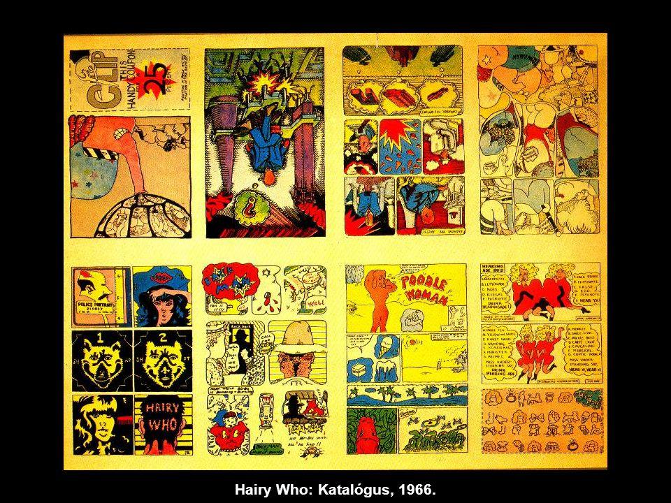 Hairy Who: Katalógus, 1966.