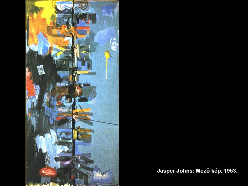 Jasper Johns: Mező kép, 1963.