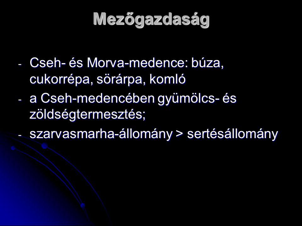 Mezőgazdaság - Cseh- és Morva-medence: búza, cukorrépa, sörárpa, komló - a Cseh-medencében gyümölcs- és zöldségtermesztés; - szarvasmarha-állomány > s