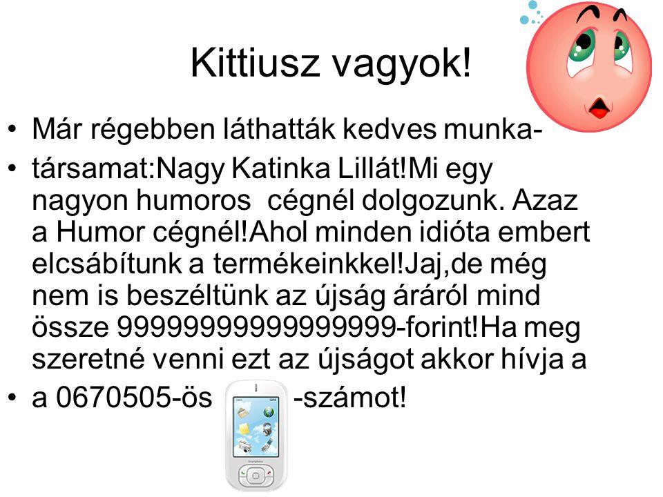 Kittiusz vagyok! •Már régebben láthatták kedves munka- •társamat:Nagy Katinka Lillát!Mi egy nagyon humoros cégnél dolgozunk. Azaz a Humor cégnél!Ahol