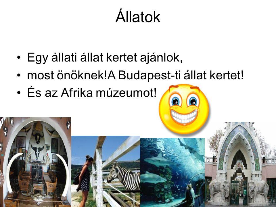 Állatok •Egy állati állat kertet ajánlok, •most önöknek!A Budapest-ti állat kertet! •És az Afrika múzeumot!