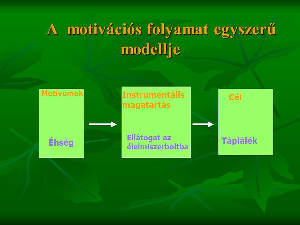 A motivációs folyamat egyszerű modellje A motivációs folyamat egyszerű modellje Motívumok Éhség Instrumentális magatartás Ellátogat az élelmiszerboltb