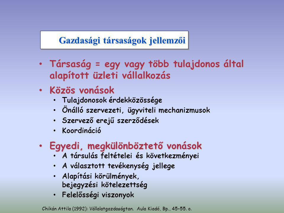 A vállalat ügyletei Értékesítési piac Értékesítési piac Értékesítés Igénykielégítés Értékesítés Vállalat Termelés Szolgáltatás Erőforrás- piacok Erőforrás- piacok Beszerzés Erőforrások Munkaerő Állóeszköz Anyag Információ Munkaerő Állóeszköz Anyag Információ Visszacsatolás Szabó József (2003): Vállalatok, vállalkozások gazdaságtana.