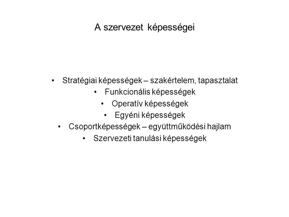 A szervezet képességei •Stratégiai képességek – szakértelem, tapasztalat •Funkcionális képességek •Operatív képességek •Egyéni képességek •Csoportképe
