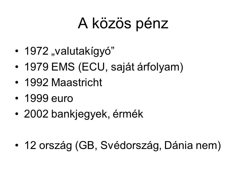 """A közös pénz •1972 """"valutakígyó"""" •1979 EMS (ECU, saját árfolyam) •1992 Maastricht •1999 euro •2002 bankjegyek, érmék •12 ország (GB, Svédország, Dánia"""