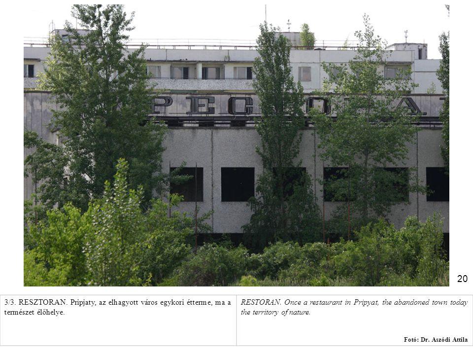 20 3/3. RESZTORAN. Pripjaty, az elhagyott város egykori étterme, ma a természet élőhelye. RESTORAN. Once a restaurant in Pripyat, the abandoned town t