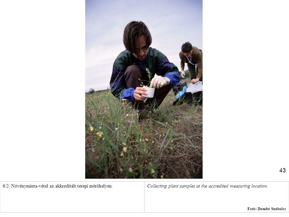 43 6/2. Növényminta-vétel az akkreditált terepi mérőhelyen.Collecting plant samples at the accredited measuring location. Fotó: Dombó Szabolcs