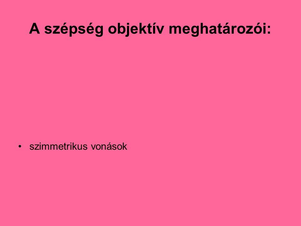 A szépség objektív meghatározói: •szimmetrikus vonások