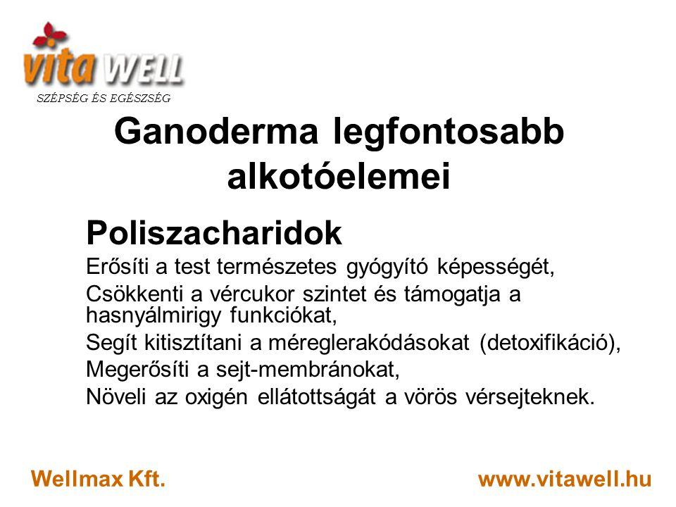 www.vitawell.hu SZÉPSÉG ÉS EGÉSZSÉG Wellmax Kft. Ganoderma legfontosabb alkotóelemei Poliszacharidok Erősíti a test természetes gyógyító képességét, C