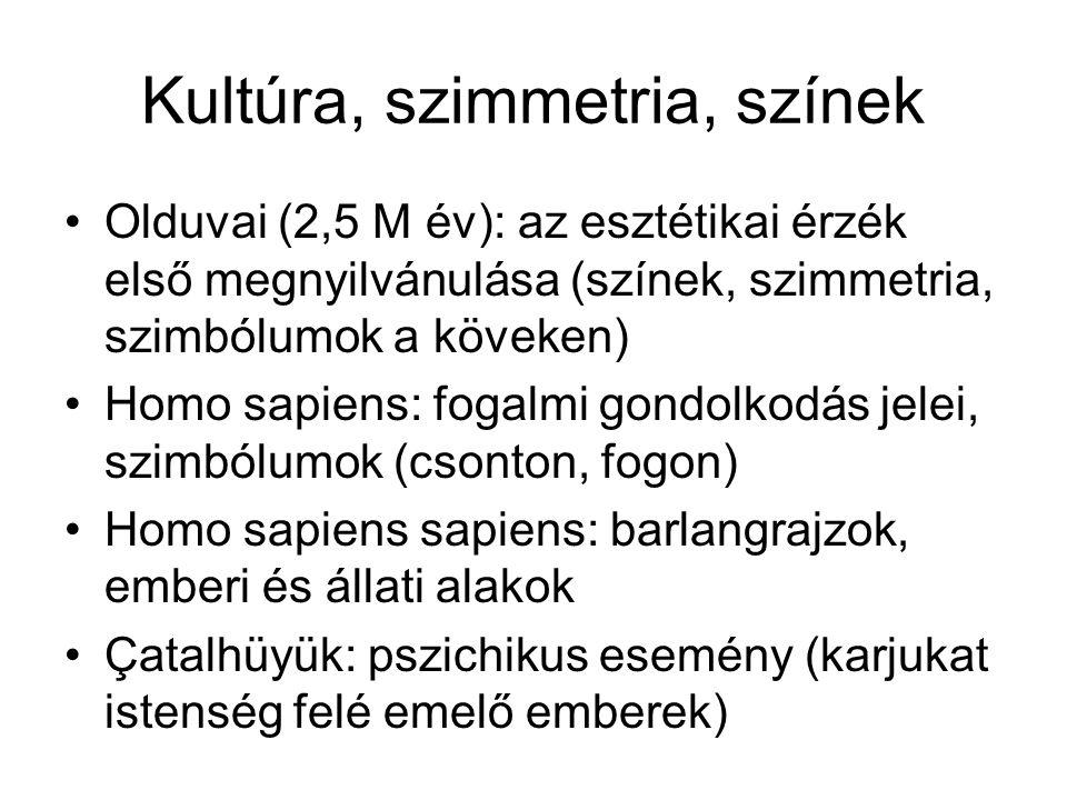 Kultúra, szimmetria, színek •Olduvai (2,5 M év): az esztétikai érzék első megnyilvánulása (színek, szimmetria, szimbólumok a köveken) •Homo sapiens: f