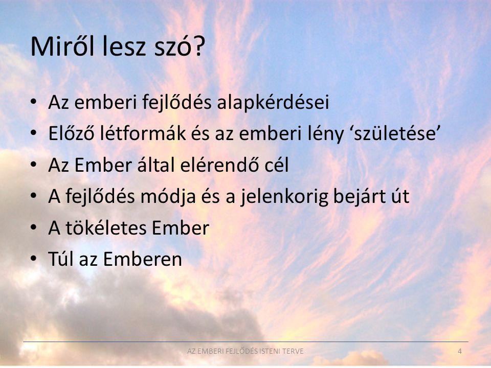 • Hetedik gyökérfaj (n*10-100e év múlva?) 1.
