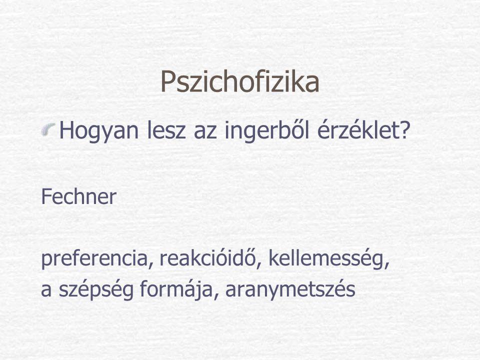 Pszichofizika Hogyan lesz az ingerből érzéklet? Fechner preferencia, reakcióidő, kellemesség, a szépség formája, aranymetszés