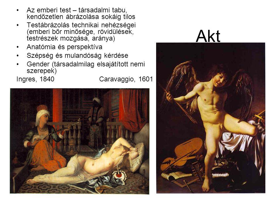 Akt •Az emberi test – társadalmi tabu, kendőzetlen ábrázolása sokáig tilos •Testábrázolás technikai nehézségei (emberi bőr minősége, rövidülések, testrészek mozgása, aránya) •Anatómia és perspektíva •Szépség és mulandóság kérdése •Gender (társadalmilag elsajátított nemi szerepek) Ingres, 1840Caravaggio, 1601