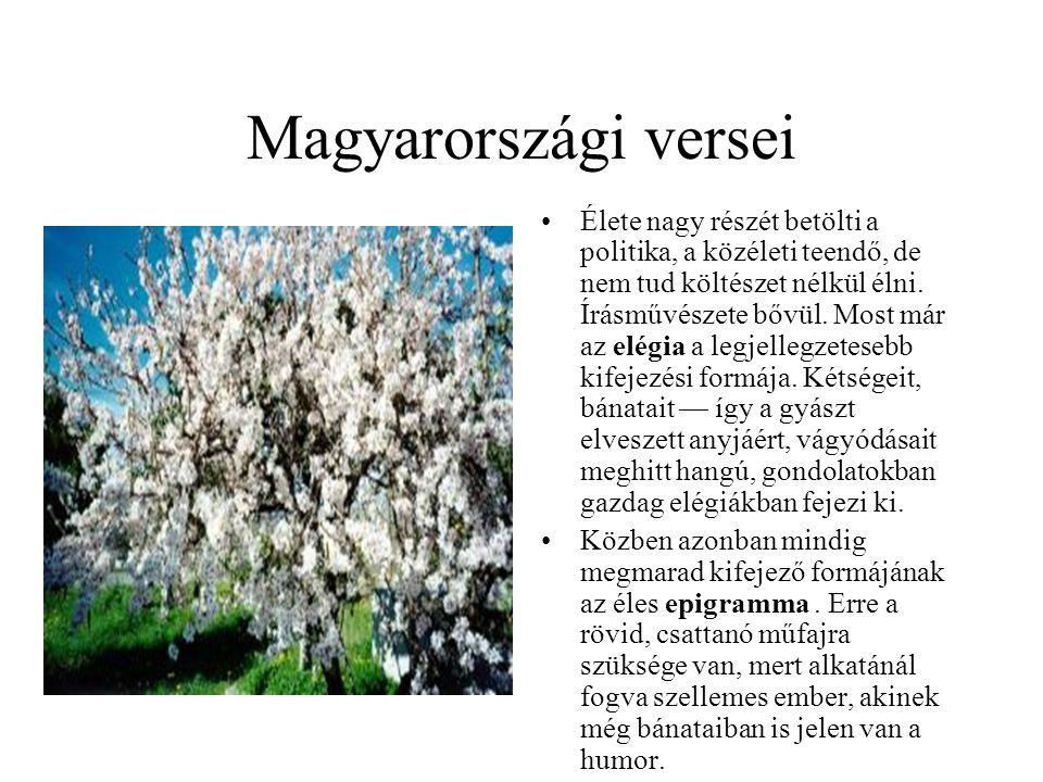 Magyarországi versei •Élete nagy részét betölti a politika, a közéleti teendő, de nem tud költészet nélkül élni. Írásművészete bővül. Most már az elég