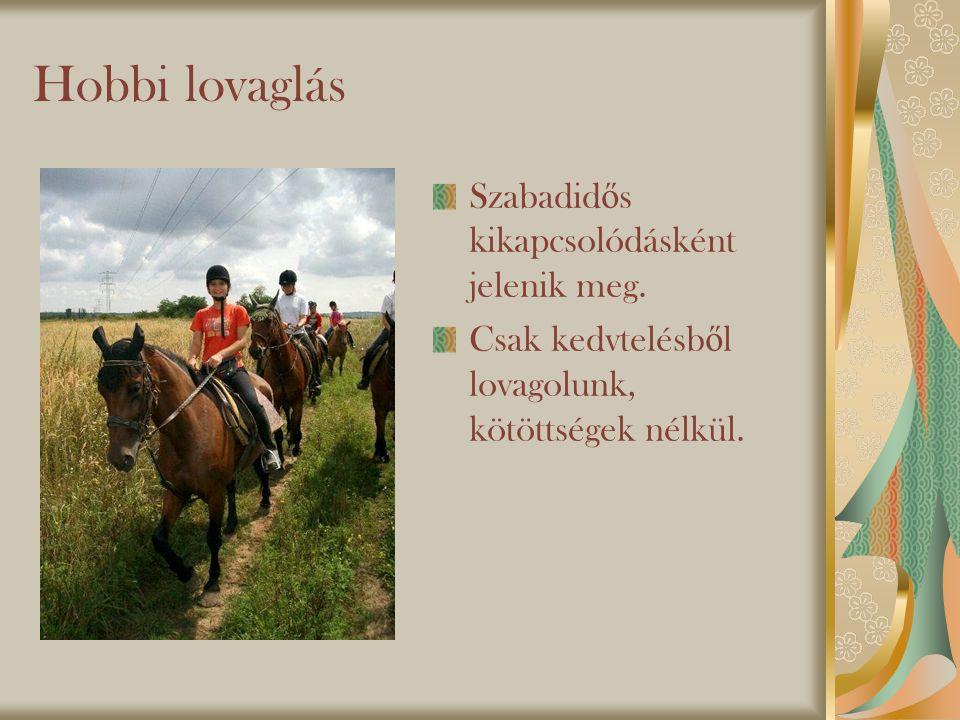 Hobbi lovaglás Szabadid ő s kikapcsolódásként jelenik meg.