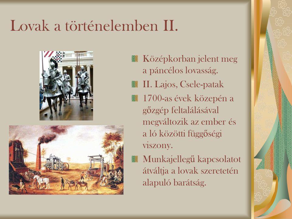 Lovak a történelemben II.Középkorban jelent meg a páncélos lovasság.