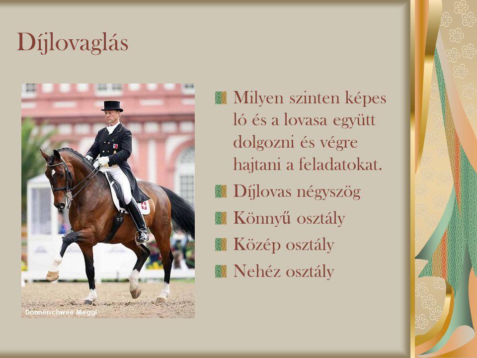 Díjlovaglás Milyen szinten képes ló és a lovasa együtt dolgozni és végre hajtani a feladatokat.