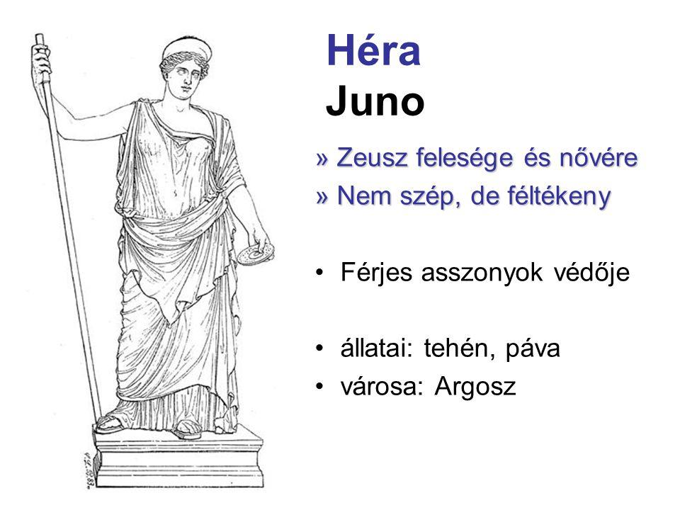 Héra Juno » Zeusz felesége és nővére » Nem szép, de féltékeny •Férjes asszonyok védője •állatai: tehén, páva •városa: Argosz