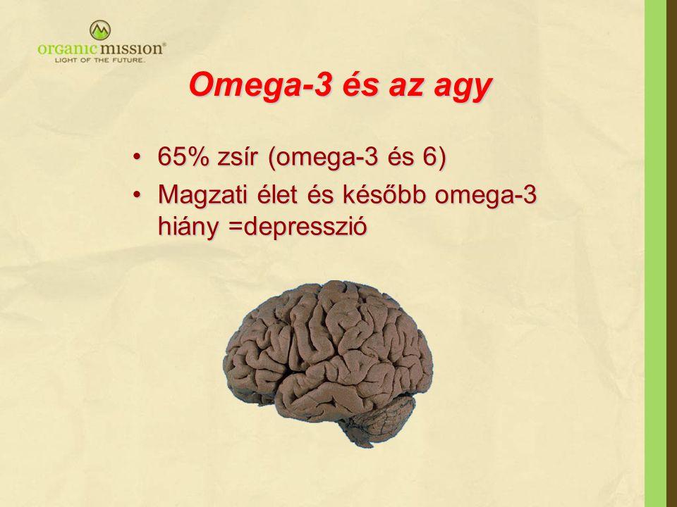 Omega-3 és az agy •65% zsír (omega-3 és 6) •Magzati élet és később omega-3 hiány =depresszió