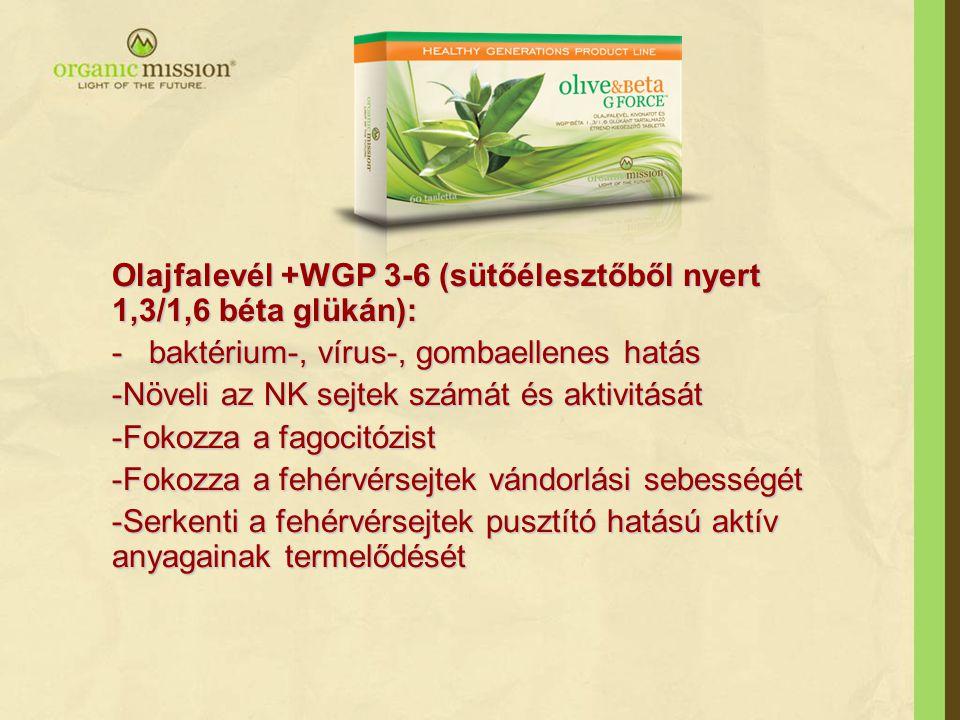 Olajfalevél +WGP 3-6 (sütőélesztőből nyert 1,3/1,6 béta glükán): - baktérium-, vírus-, gombaellenes hatás -Növeli az NK sejtek számát és aktivitását -