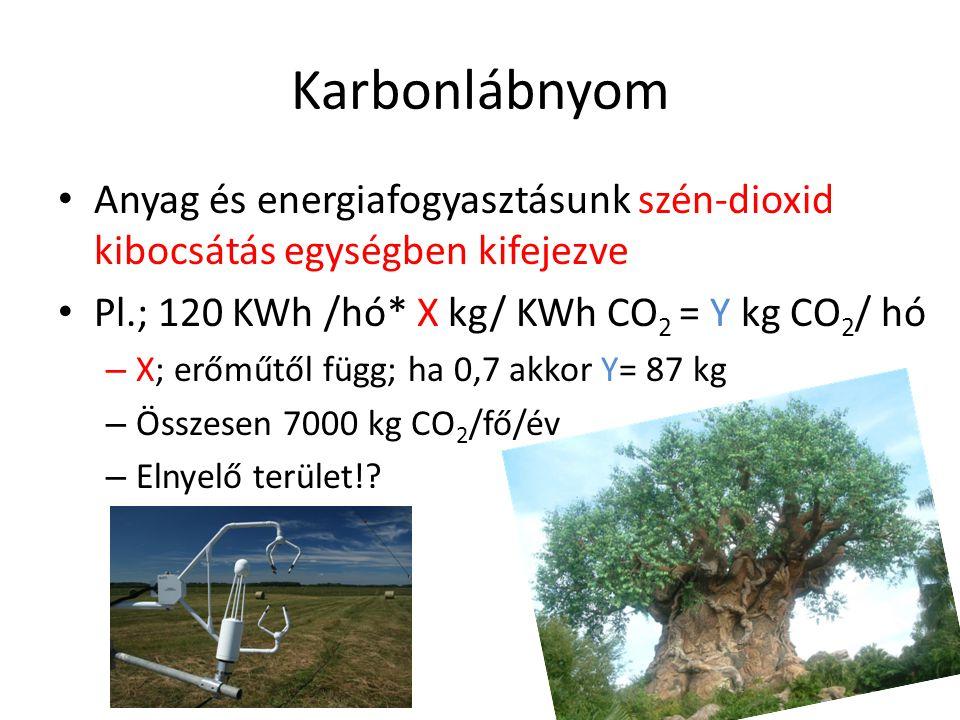Karbonlábnyom • Anyag és energiafogyasztásunk szén-dioxid kibocsátás egységben kifejezve • Pl.; 120 KWh /hó* X kg/ KWh CO 2 = Y kg CO 2 / hó – X; erőm