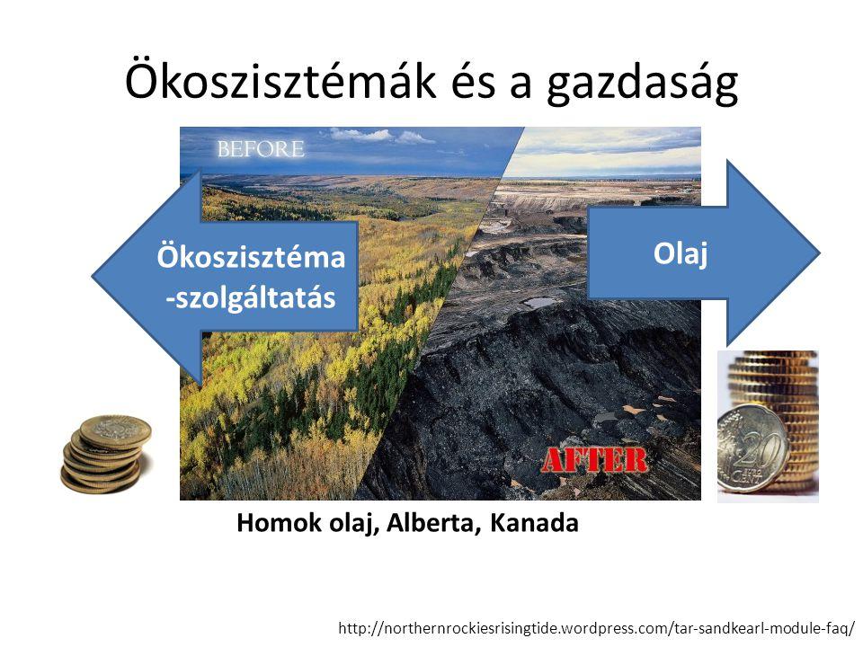 Ökoszisztémák és a gazdaság http://northernrockiesrisingtide.wordpress.com/tar-sandkearl-module-faq/ Olaj Ökoszisztéma -szolgáltatás Homok olaj, Alber