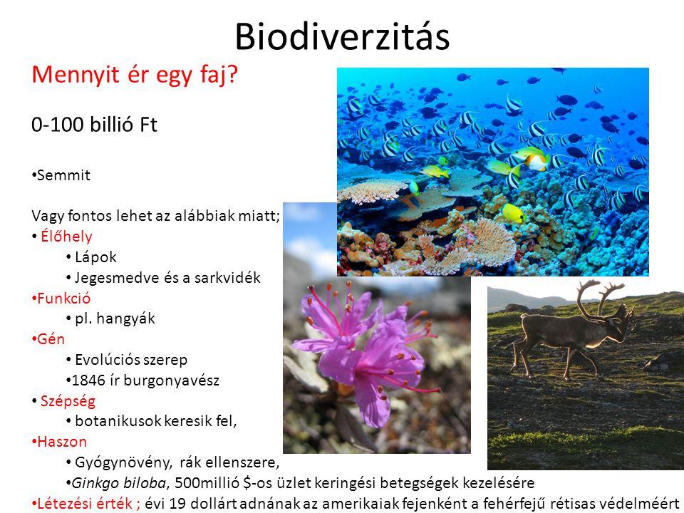 Biodiverzitás Mennyit ér egy faj? 0-100 billió Ft • Semmit Vagy fontos lehet az alábbiak miatt; • Élőhely • Lápok • Jegesmedve és a sarkvidék • Funkci
