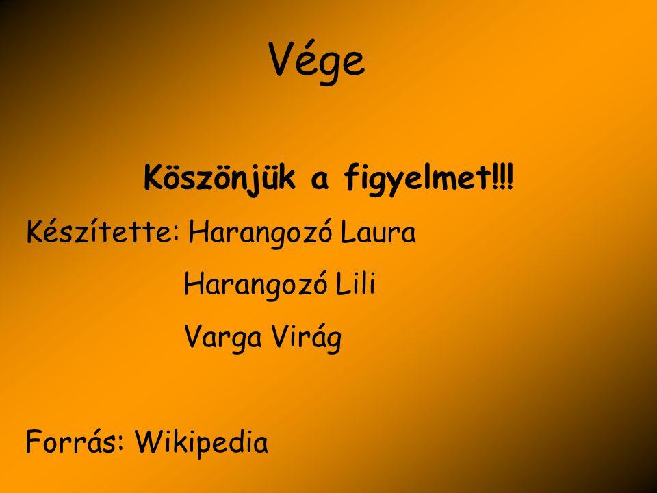 Vége Köszönjük a figyelmet!!! Készítette: Harangozó Laura Harangozó Lili Varga Virág Forrás: Wikipedia