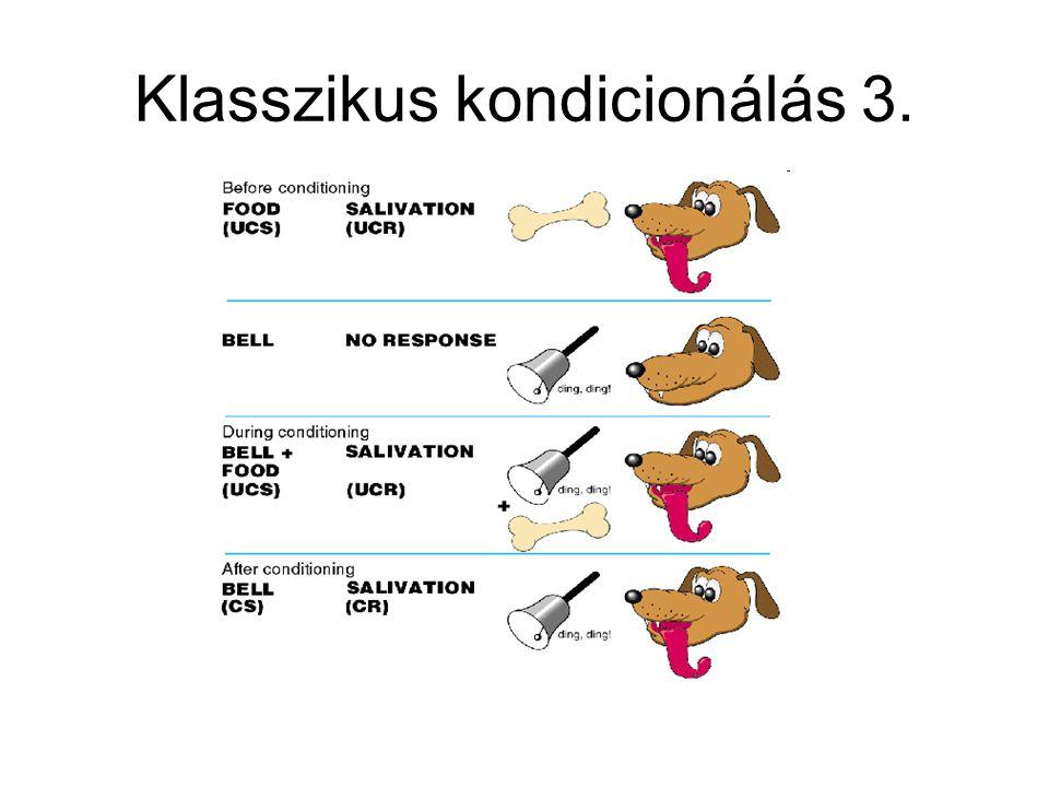 Klasszikus kondicionálás 3.