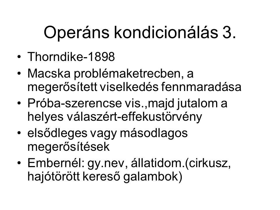 Operáns kondicionálás 3. •Thorndike-1898 •Macska problémaketrecben, a megerősített viselkedés fennmaradása •Próba-szerencse vis.,majd jutalom a helyes