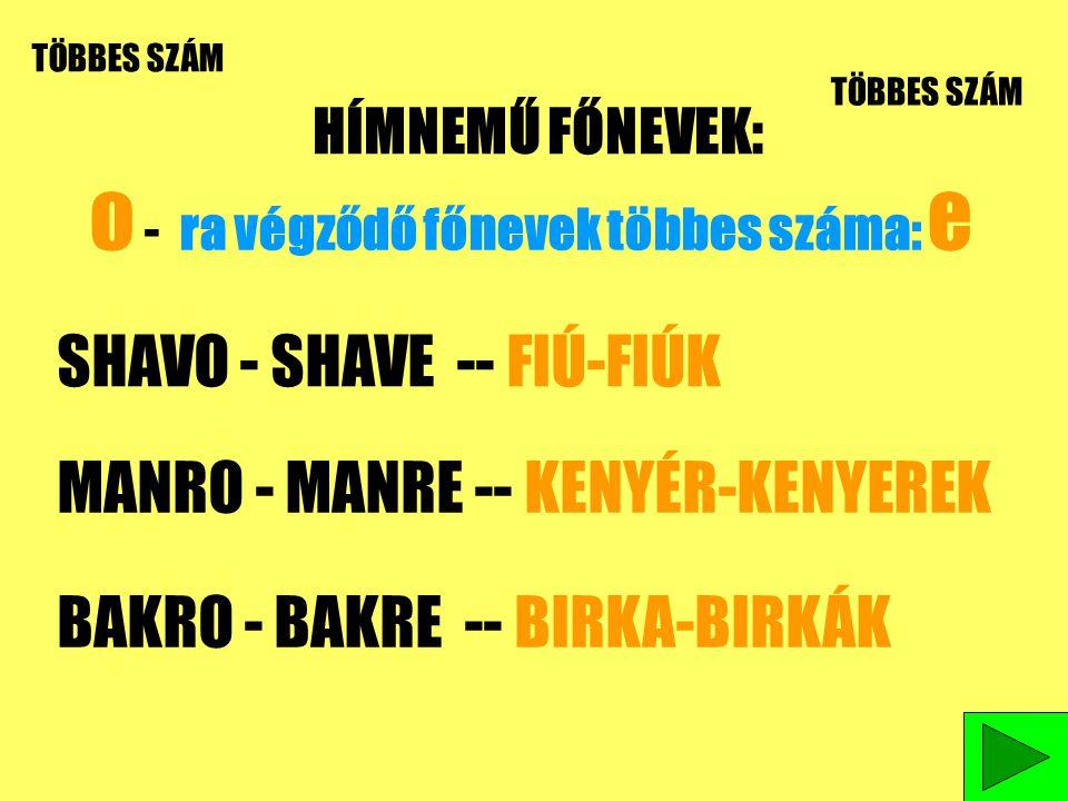 HÍMNEMŰ FŐNEVEK: TÖBBES SZÁM o - ra végződő főnevek többes száma: e SHAVO - SHAVE -- FIÚ-FIÚK MANRO - MANRE -- KENYÉR-KENYEREK BAKRO - BAKRE -- BIRKA-BIRKÁK