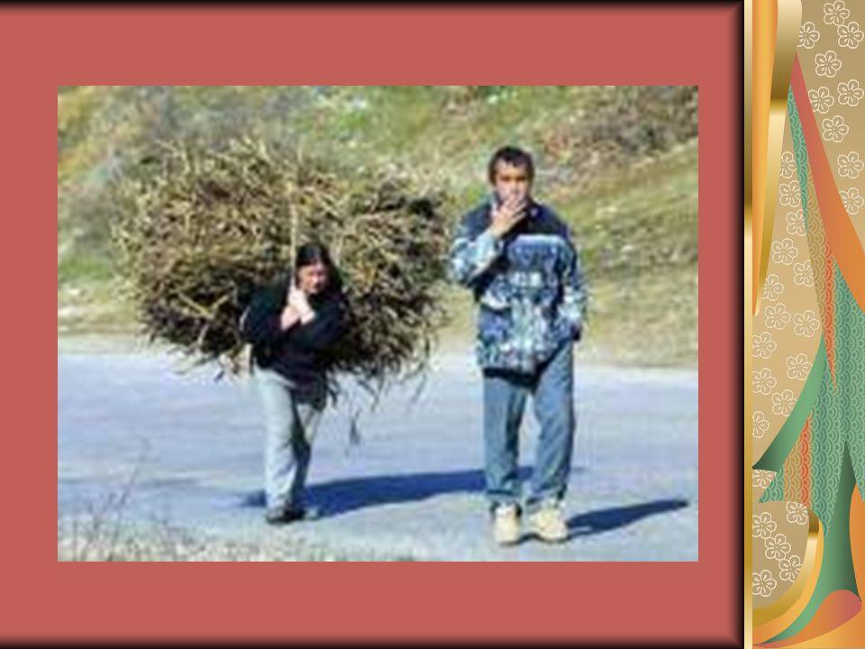 6.Női szerepek ma: szerető, feleség, anya, háziasszony, hivatásának élő nő Nemi szerepek különféle területei: Dolgozzon-e a nő.