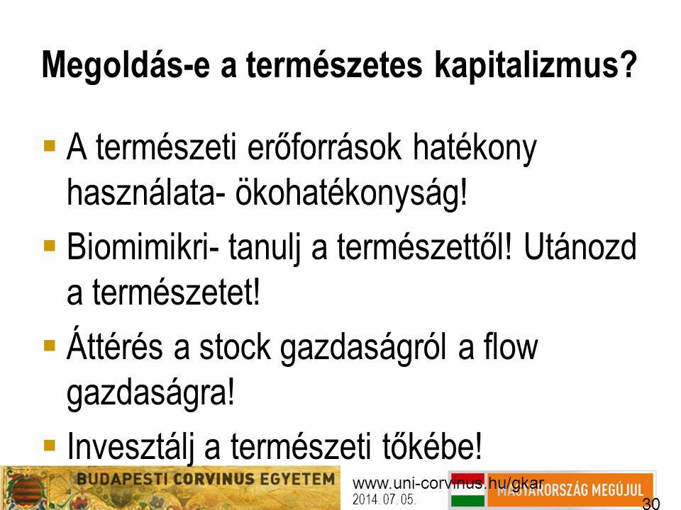 www.uni-corvinus.hu/gkar 30 2014. 07. 05. Megoldás-e a természetes kapitalizmus?  A természeti erőforrások hatékony használata- ökohatékonyság!  Bio