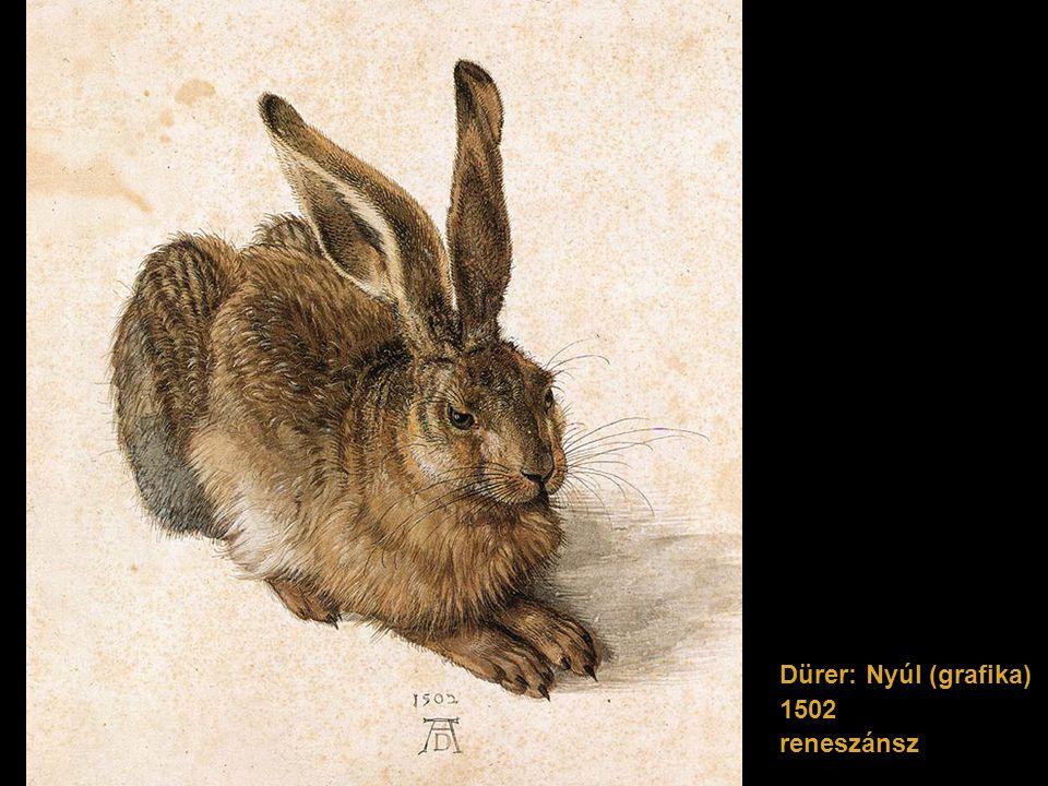 Dürer: Nyúl (grafika) 1502 reneszánsz