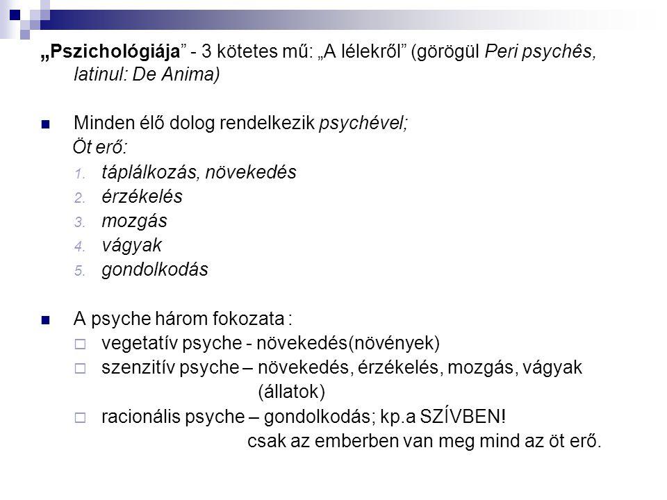 """"""" Pszichológiája"""" - 3 kötetes mű: """"A lélekről"""" (görögül Peri psychês, latinul: De Anima)  Minden élő dolog rendelkezik psychével; Öt erő: 1. táplálko"""