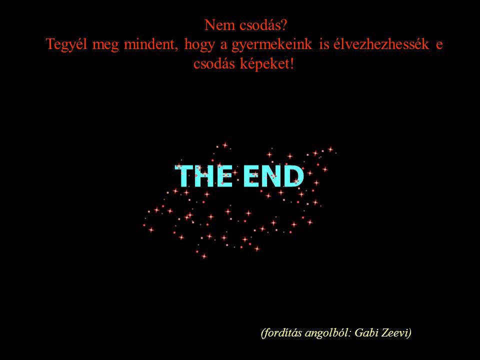 THE END (fordítás angolból: Gabi Zeevi) Nem csodás.