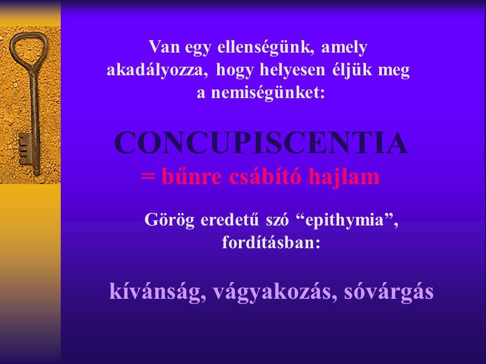"""Van egy ellenségünk, amely akadályozza, hogy helyesen éljük meg a nemiségünket: CONCUPISCENTIA = bűnre csábító hajlam Görög eredetű szó """"epithymia"""", f"""