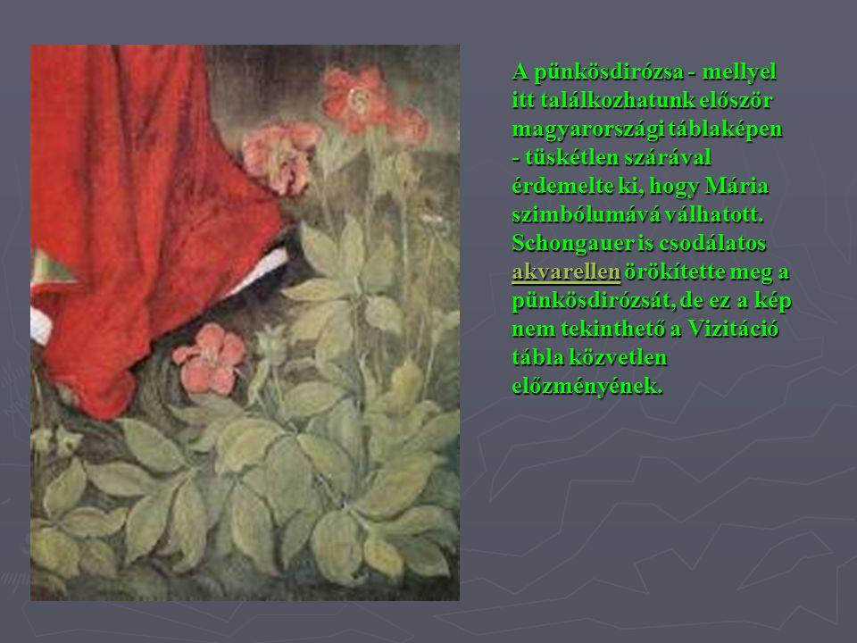 A pünkösdirózsa - mellyel itt találkozhatunk először magyarországi táblaképen - tüskétlen szárával érdemelte ki, hogy Mária szimbólumává válhatott. Sc