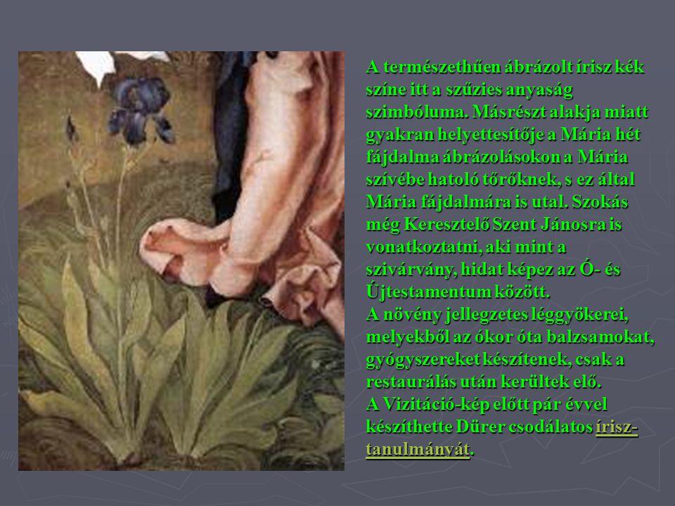 A természethűen ábrázolt írisz kék színe itt a szűzies anyaság szimbóluma. Másrészt alakja miatt gyakran helyettesítője a Mária hét fájdalma ábrázolás