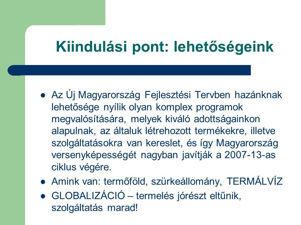 Vízió Magyarország 20 év múlva Európa No.1  Termál és gyógyvízre épülő egészségturisztikai desztinációja illetve  Egészségipari országa legyen.