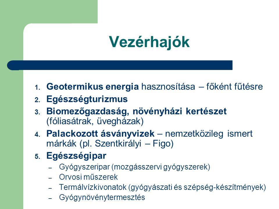 Vezérhajók 1. Geotermikus energia hasznosítása – főként fűtésre 2.
