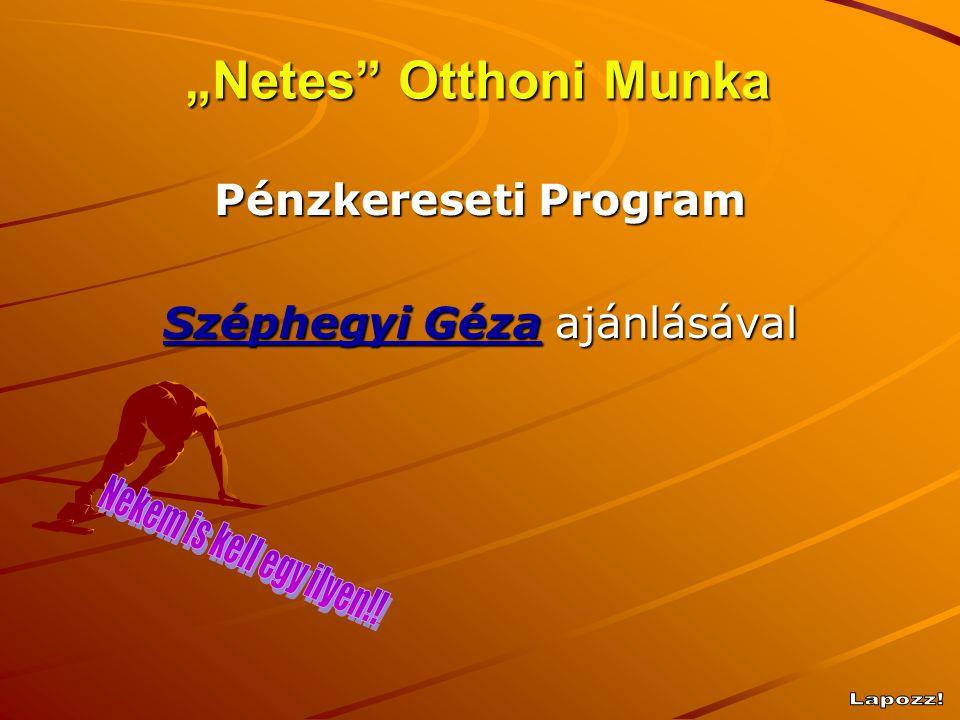 """""""Netes"""" Otthoni Munka Pénzkereseti Program Széphegyi Géza ajánlásával"""
