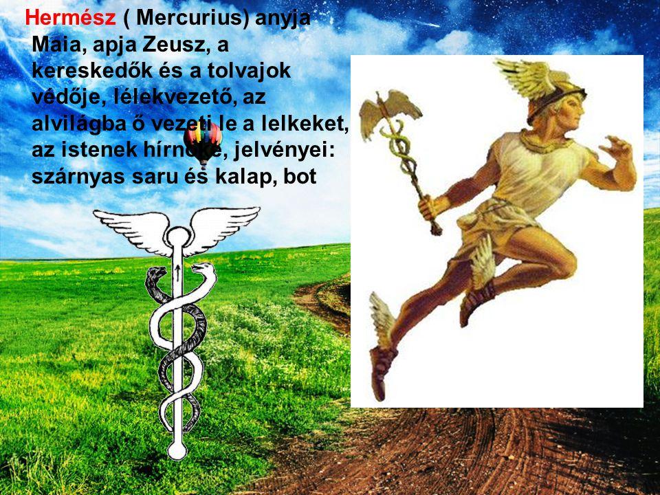 Hermész ( Mercurius) anyja Maia, apja Zeusz, a kereskedők és a tolvajok védője, lélekvezető, az alvilágba ő vezeti le a lelkeket, az istenek hírnöke,